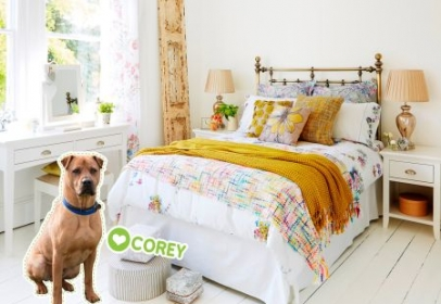 Wood Green Rescue Pets featured in Furniture Village Catalogue