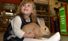Pets at Home report shows we are a nation of Pet Fanatics!