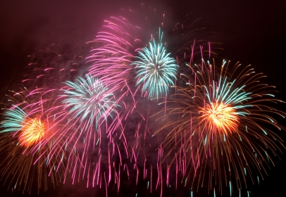 RSPCA Helps Fight Firework Fear