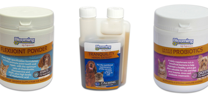 Blooming Pet Products offer supplements with 30 years experience of development
