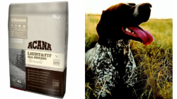 Acana Offer A Chance for Dogs To Shape Up for January Too