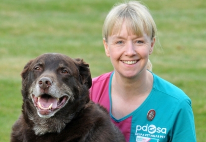 Pet Obesity on the Rise, says Charity
