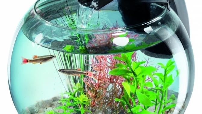 Tetra Launches a New Cascade Globe Aquarium