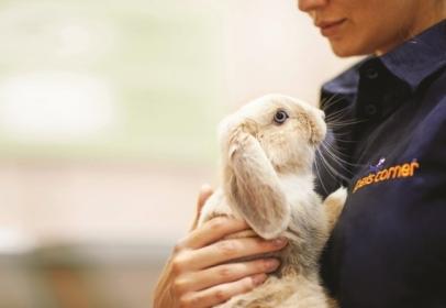 Pets Corner Wins Best Retailer at RWAF Awards