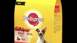PEDIGREE® Launches New Dry Food For Small Dogs