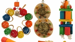 Northern Pet Trade introduces avian toys