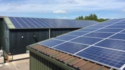 Grove Pet Foods Ltd installs solar panels